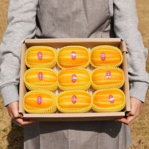 우등생 성주참외 산지직송 정품 로얄과 2.5kg (7~12개)