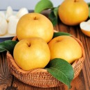 전남 나주 안순호님 가정용 햇배 15kg (21-25과) 추천