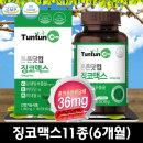징코맥스 (6개월분) 은행잎 추출물 비타민 복합 함유