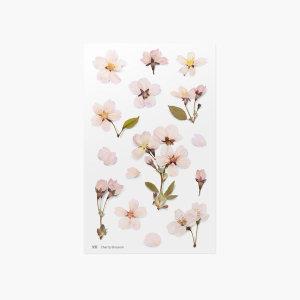 (어프리) 압화스티커 벚꽃 데코 꾸미기 꽃 스티커