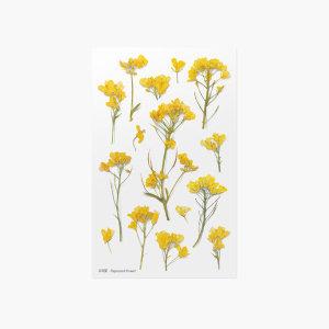 (어프리) 압화스티커 유채꽃 데코 꾸미기 꽃 스티커