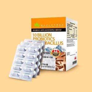메이플트리 100억 프로바이오틱스 생유산균 (60캡슐 2개월분)