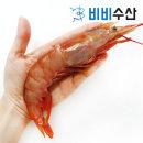 자연산 홍새우 특대 1kg