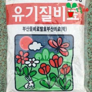 유기질 비료 모종 채소 베란다 텃밭 공기정화 식물 꽃