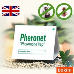 보키니IPM 화랑곡나방 권연벌레 쌀나방 페로몬 트랩