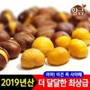 황금 약단밤 2019년산 약밤 1kg (특A급)