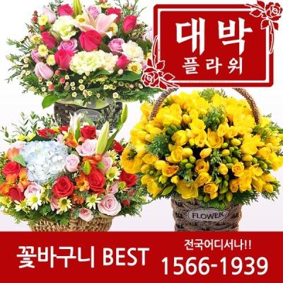 2020 꽃바구니 생일선물 기념일 축하선물 전국꽃배달
