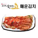 대전월평동 40년전통 조풍연실비매운겉절이김치/ 1kg