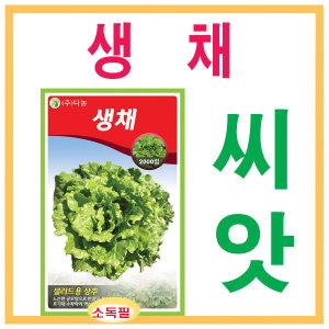 씨앗 다농생채상추(2000립)