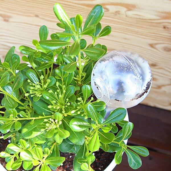 워터케어2P 자동급수기 화분물주기 화초수분공급기
