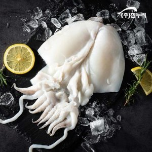 대사이즈 국내산 손질 갑오징어 700g (2-3미)