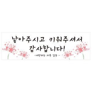 ~제작~어버이날 스승의날현수막 B1494 낳아주신은혜