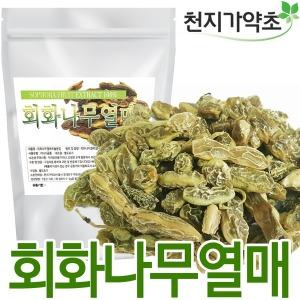 (무배) 회화열매 600X5봉 추출분말 1kg 회화나무열매