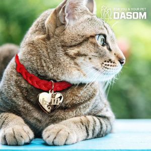 강아지 고양이 인식표 이름표 목걸이 반려견 반려묘