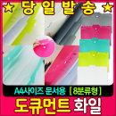 비팬시 글로시 도큐먼트 화일 (8분류) 색상랜덤