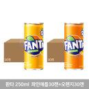 환타 파인애플 30CAN + 오렌지 30CAN (각 250ml)