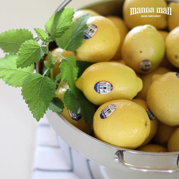 미국 팬시 썬키스트 레몬 140과 1박스(개당120g/17kg)