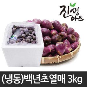 제주도 백년초 백년초열매 냉동백년초 3kg