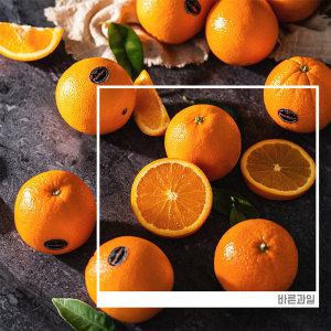 명품 퓨어스펙 블랙라벨 오렌지 40과 2020마지막수량