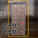 엘리베이터 항균필름 승강기 항균 40cmX5m 스티커20매