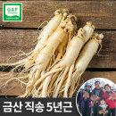금산인삼 세척 원수삼(대)선물용 한채 750g  씻은 바