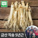 금산 인삼 세척 원수삼 소 750g 선물용 한채 씻은 바