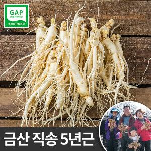 금산 인삼 세척 난발삼 한채(소) 5년근 750g  씻은 바