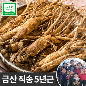 금산 인삼 5년근 원수삼(대) 선물용 한채 750g 잔뿌리