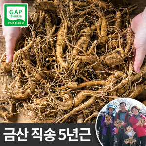 금산인삼 못난이삼 1kg 막삼 파삼 홍삼제조용