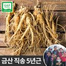 금산인삼 난발삼 중 750g 5년근 한채 뿌리많은삼 진공