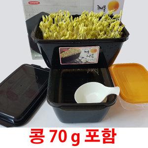 콩나물 키우기 콩나물 기르기 키트 재배기 시루 세트