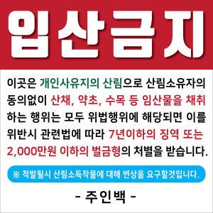 입산금지 90x90cm 사방펀칭 산행 재취금지 임야 주인백