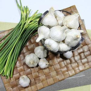 경남 남해 박말숙님의 통마늘 2kg(특) 햇마늘 실중량