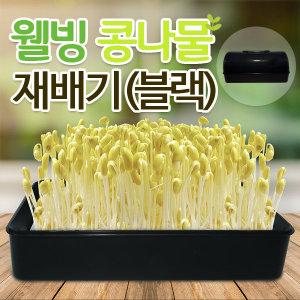 SM 콩나물 새싹재배기 블랙 / 콩나물키우기 씨앗