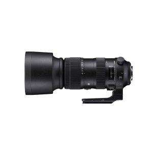 엘카메라  SIGMA S 60-600/4.5-6.3 DG OS HSM_CANON / 캐논