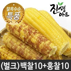 특품 찰옥수수 쫀득쫀득 옥수수 벌크상품백찰10+홍찰10