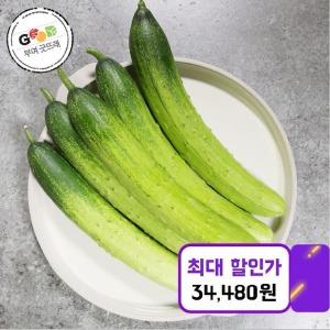 굿뜨래 다다기 오이 15kg/특/70~80개내외(쿠폰가34480)