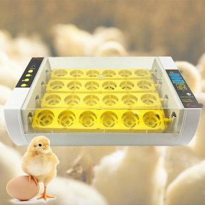 조류 병아리부화기 달걀부화기 자동부화기 24란