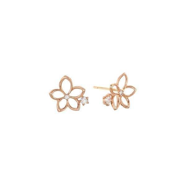 (신세계센텀점)로이드 데일리 베이직 플라워 큐빅 14K Gold 귀걸이 LPFH2075G