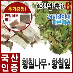 황칠나무300g/황칠목/황칠나무차/분말/환/국내산