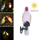 태양광 앵무새 장식등/원예 화단 인테리어조명 정원등