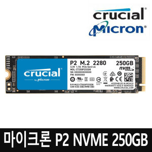 TK 마이크론 크루셜 P2 NVMe 2280 (M.2) 250GB