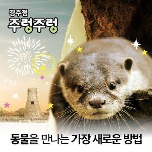 (문자발송/당일사용)(경주/보문단지)주렁주렁 경주점 입장권(테마파크 실내동물원 동물체험 경상여행)