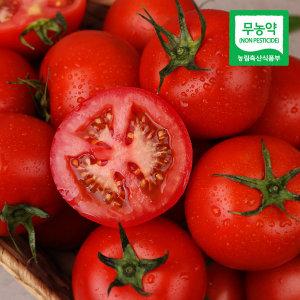 흙살림 친환경 무농약 토마토 3kg