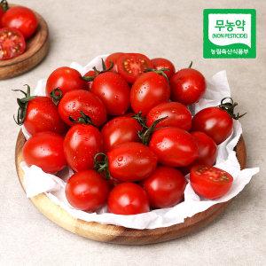 흙살림 친환경 무농약 대추방울토마토 1kgx2개