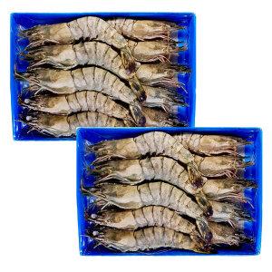 손씨푸드 1+1 블랙타이거새우 10미 대하 왕새우