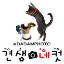 네컷사진(누끼) 인화 편집 강아지사진 고양이사진