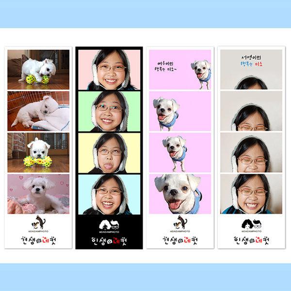 네컷사진(누끼+이동)인화 편집 강아지사진 고양이사진