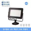 명품브랜드 장수램프 LED 투광기 30W 블랙(주광색)