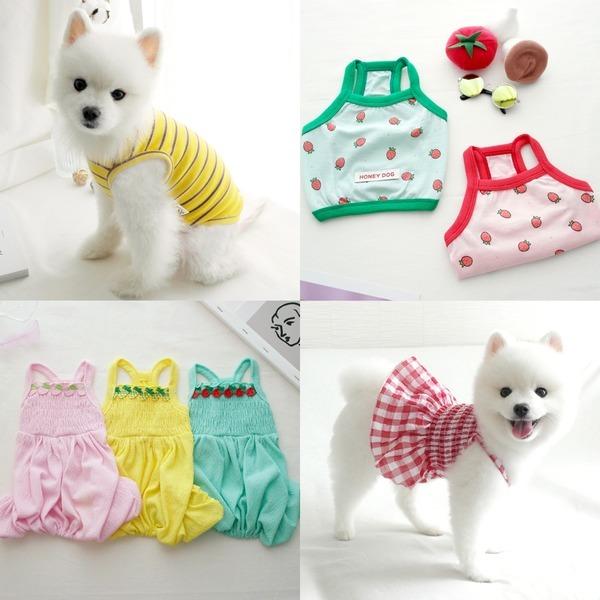 동동이네 강아지옷 2020 봄 여름/티셔츠/원피스 XS-XL